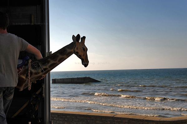 36,尤他海边主题餐厅里的小男孩.